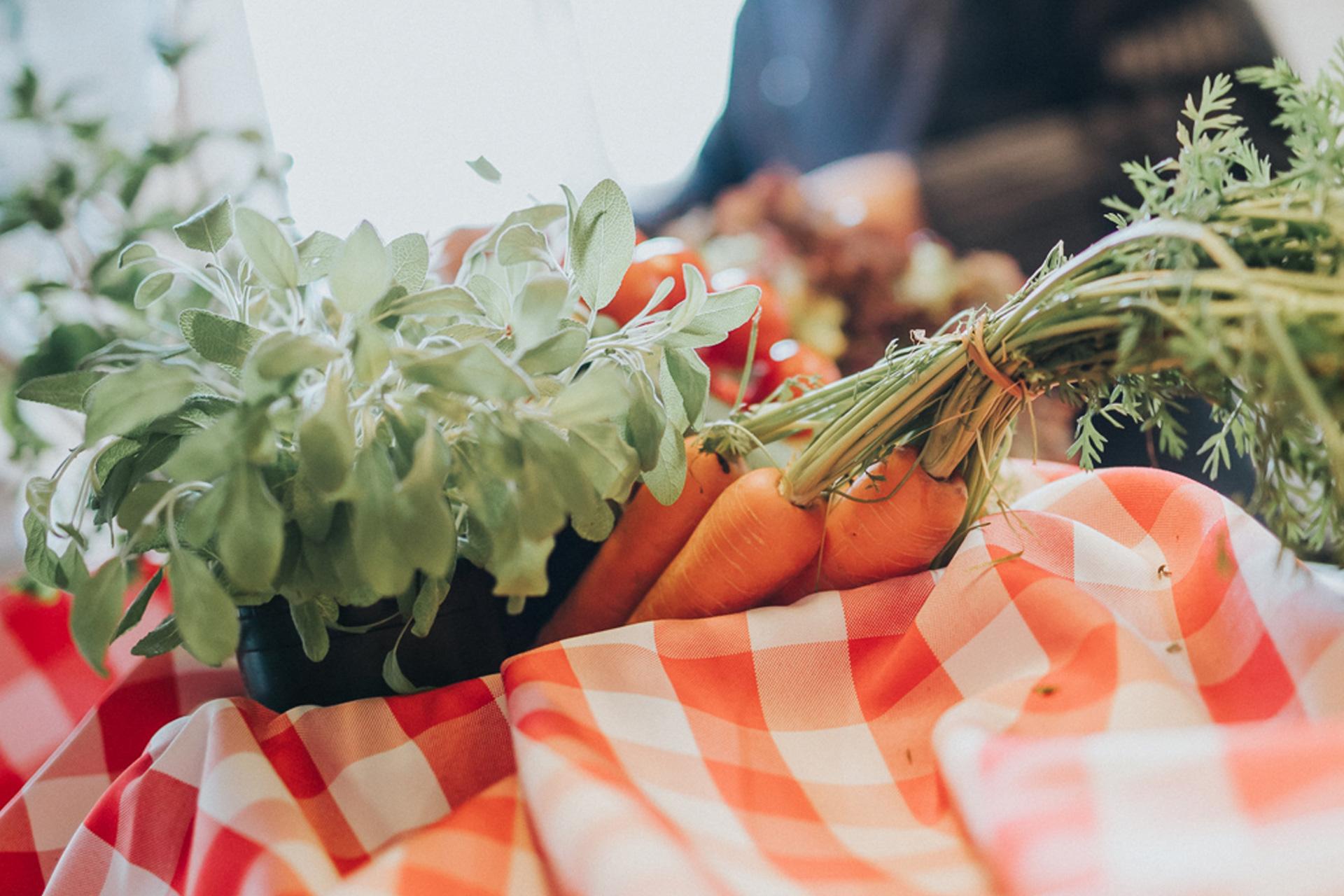 Ammerländer Gemüse mit Möhren im Korb und karierter Decke